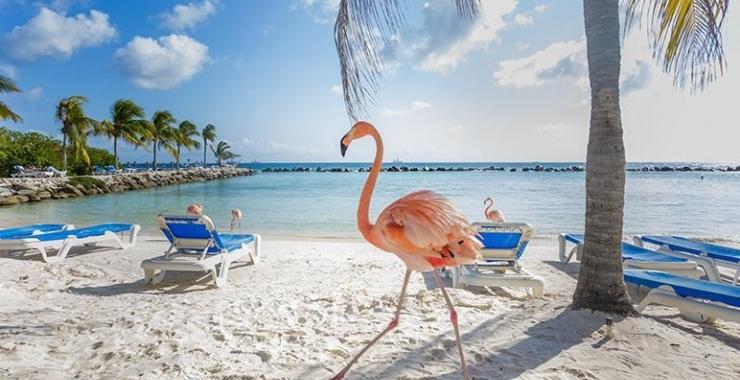 Pachet promo vacanta Croaziera Caraibe - Panama, Columbia, Aruba, Curacao, Bonaire Panama City Panama
